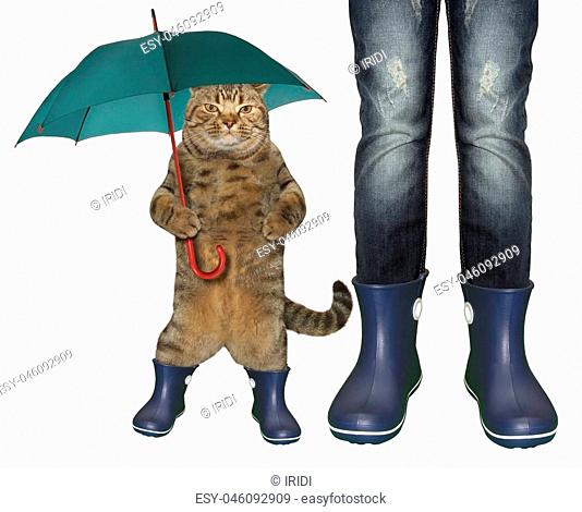 The cat with an umbrella cane and a girl are both wearing in blue rubber boots. White background