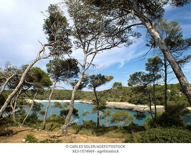 Mondragon natural park, Majorca, Spain