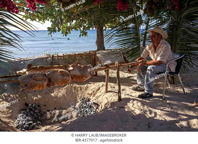 Cuban man grilling turkeys and suckling pig at the beach of Playa Ancon, near Trinidad, Sancti Spiritus Province, Cuba