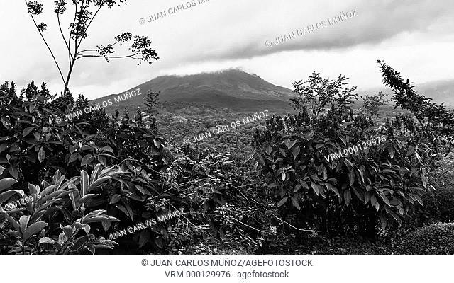 Arenal Volcano National Park. Alajuela Region. Costa Rica