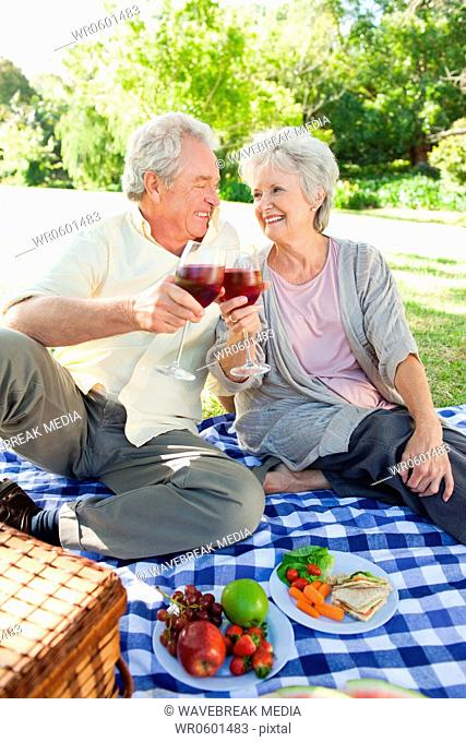 Man and a woman looking at each other while touching glasses during a picnic