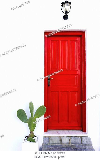 Cactus near red door
