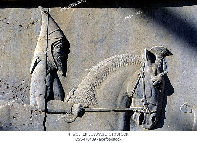 Vassal nations procession. East stairs. Apadana. Persepolis. Iran