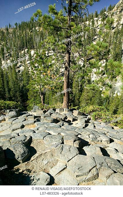 Volcanic rock formations. Devil's Postpile National Monument. Mammoth. California. United States