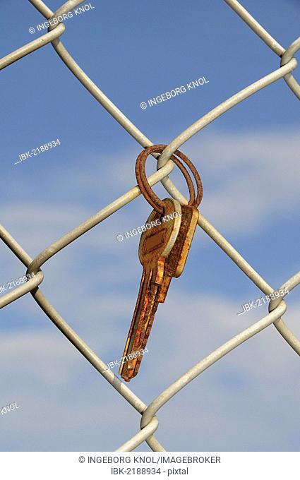 Rusty keys, key ring, wire-mesh fence