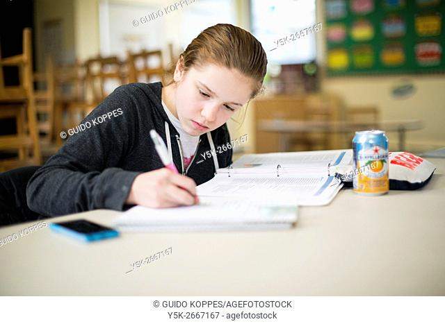 Harrison, New York, USA. Young, female primary school student to the School for Dutch Language & Culture, working on her klas room assignment