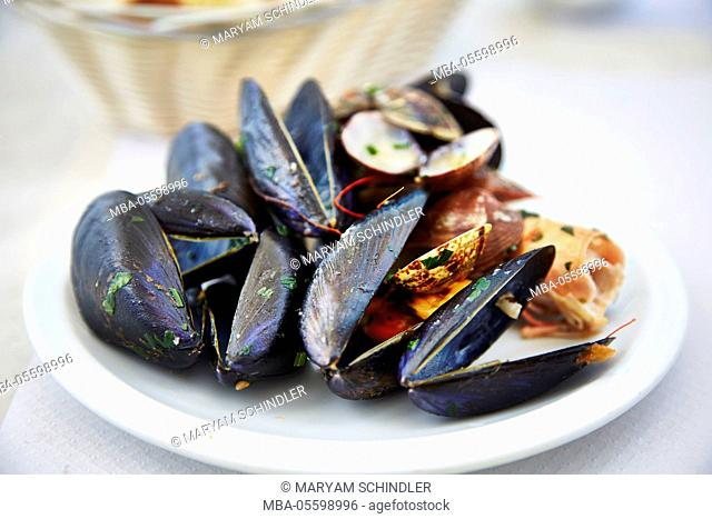 Plate full of shells, seafood, mussels, rests on plate, Italian, Italy