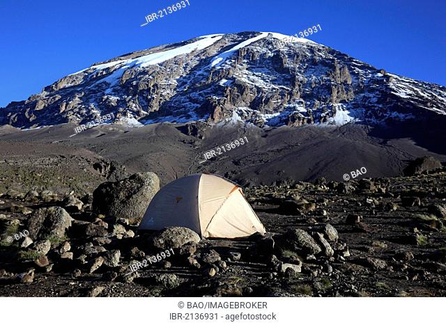 Tent with a view to the summit of Mount Kilimanjaro, as seen from the Barranco Hut, Tanzania, Africa