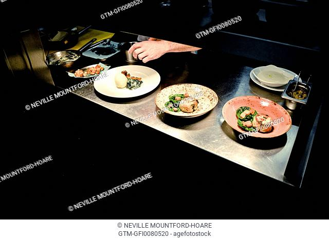 Chefs hands plating food