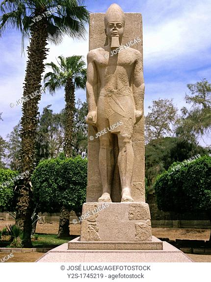 Colossal statue of Ramesses II, Ruins of Memphis, Egypt