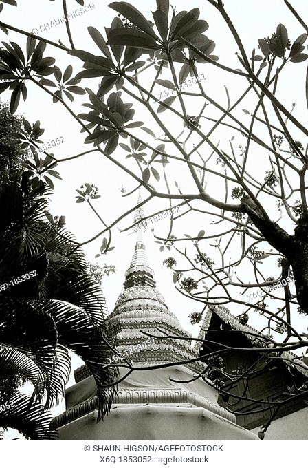 Buddhist chedi in Chiang Mai in Thailand in Southeast Asia Far East