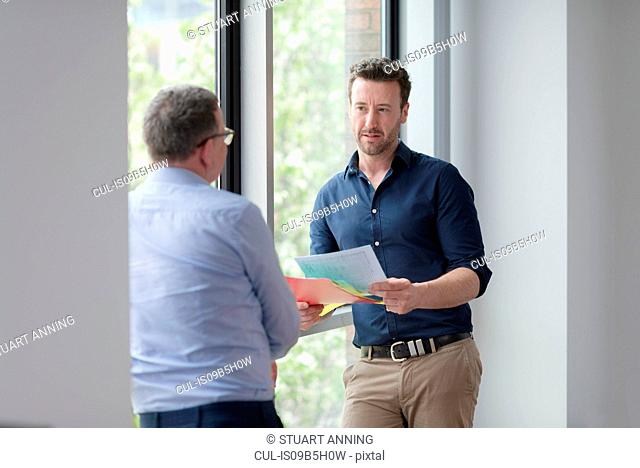 Male colleagues in discussion by office window