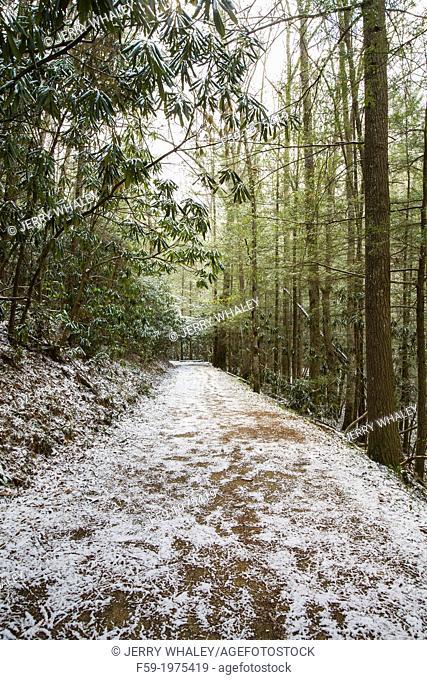Schoolhouse Gap Trail, Smokies