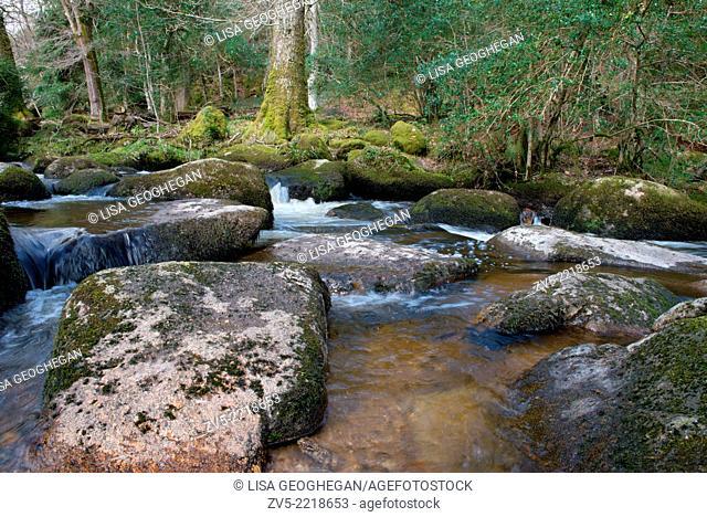 Becky Falls Woodland Park And Nature Trail, Also Known As Becka Falls, Manaton, Newton Abbott, Devon. Uk