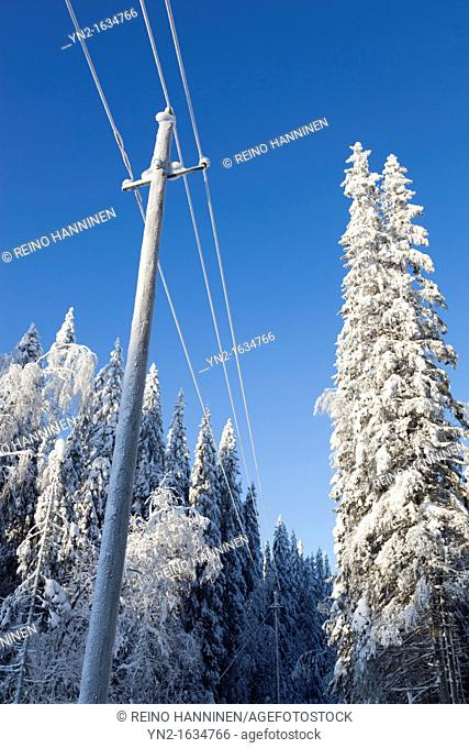 Powerline at countryside in the middle of woods at Winter  Location Suonenjoki Finland Scandinavia Europe EU