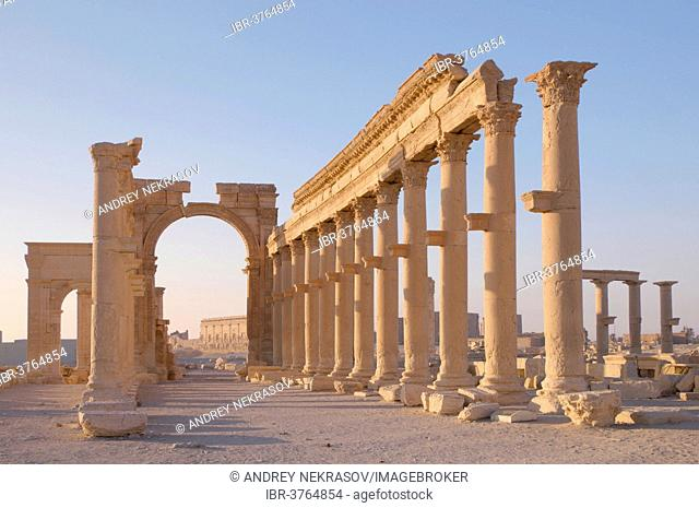 Ruins of the ancient city of Palmyra in the morning light, UNESCO World Heritage Site, Palmyra, Tadmur, Palmyra District, Homs Governorate, Syria