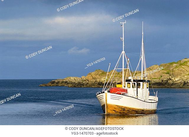 Fishing boat returns to harbor, Stamsund, Lofoten islands, Norway
