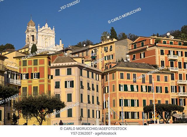 Buildings on the sea front and San Giacomo church in the background, Santa Margherita Ligure, Genova, Liguria, Italy, Europe