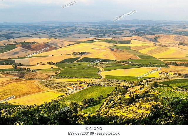 Panoramic view from Montalcino (Siena, Tuscany, Italy) in a summer evening