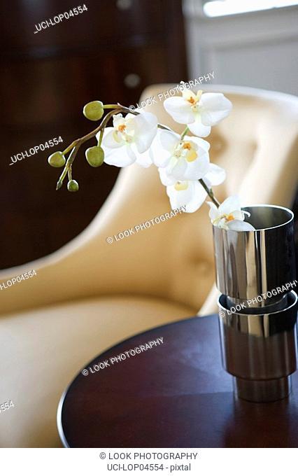 Orchids in Metal Vase