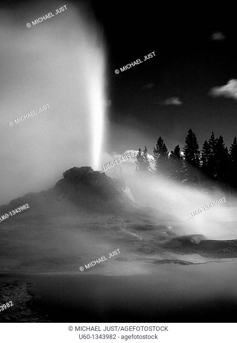 Castle Geyser erupts during an evening at the Upper Geyser Basin at Yellowstone National Park