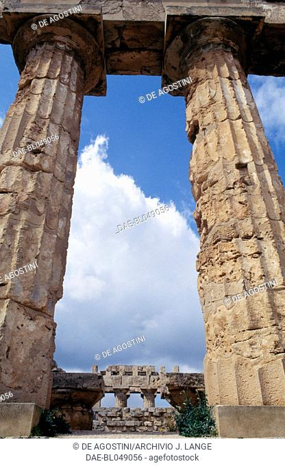 Doric columns of the Temple E or Temple of Hera, 460-450 BC, ancient city of Selinunte, Sicily, Italy. Greek civilisation, Magna Graecia, 5th century BC