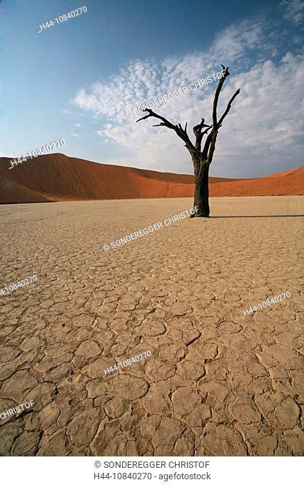 Namibia, Africa, Namib desert, Sossusvlei, Namib-Naukluft, national park, Summer 2007, Africa, sandy desert, sands, sa