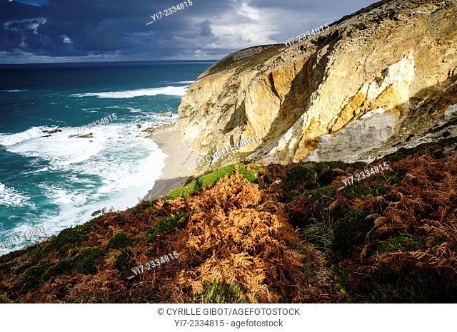Goat's Cape, or Cap de La Chèvre, Crozon Peninsula or Presqu'île de Crozon, Finistere, Brittany, France