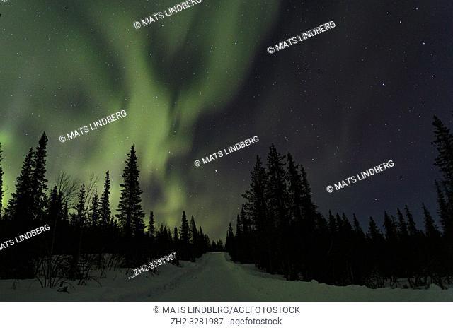 Northern light, Aurora borealis, colorful sky, Gällivare county, Swedish Lapland, Sweden
