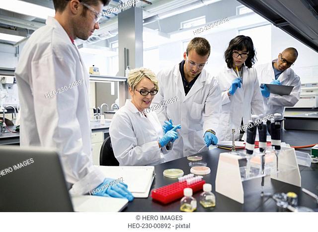 Science professor explaining scientific experiment to students laboratory