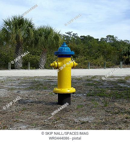 Beach Fire Hydrant