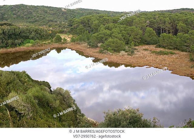 Albufera des Grau Natural Park. Minorca Biosphere Reserve, Balearic Islands, Spain