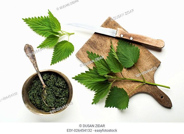 Nettle fresh green leaves on a white background