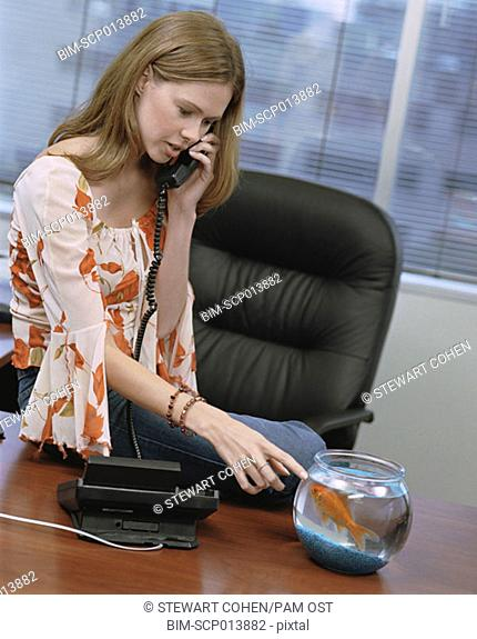 Businesswomen talking on telephone looking at goldfish bowl, Dallas, Texas, United States