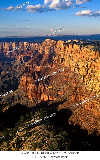 Grand Canyon National Park. Arizona. USA