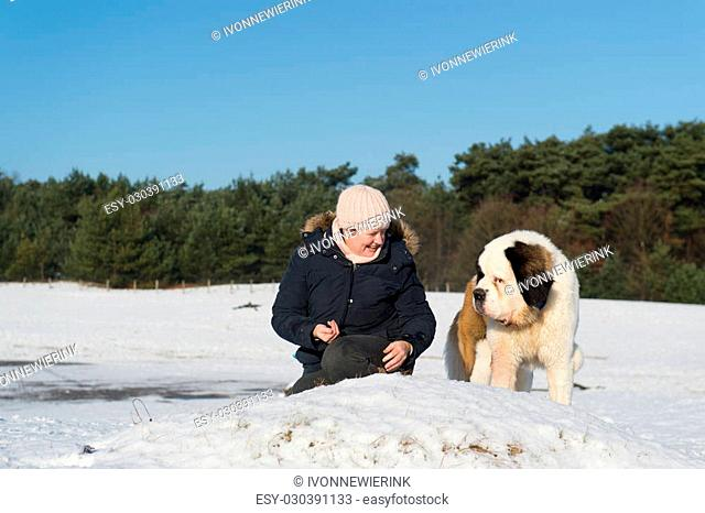 owner with big rescue dog in snow landscape