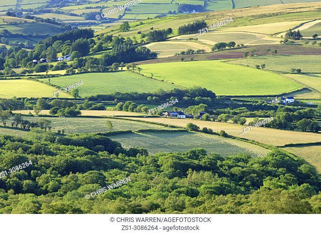 Fforest Fach Cwm Treweryn Brecon Beacons National Park Sennybridge Powys Wales