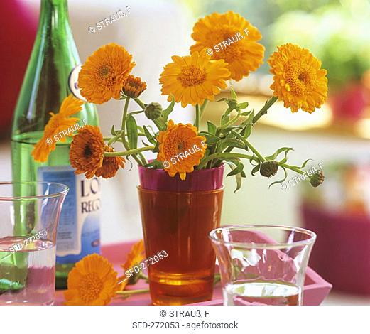 Marigolds in a glass