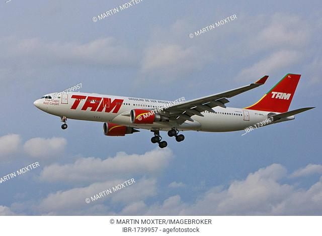 TAM Airbus A330 approaching Frankfurt Airport, a Brazilian airline, Hesse, Germany, Europe