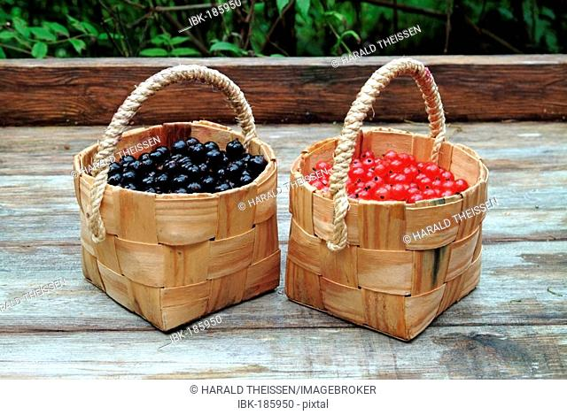 Baskets filled with red and black currants