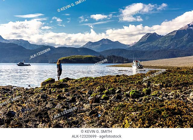 Woman standing on a rocky and kelp covered beach enjoying the view of the Kenai Mountains, Hesketh Island, Southcentral Alaska, USA