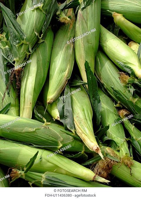 Montpelier, VT, Vermont, Farmer's Market, Corn, cobs