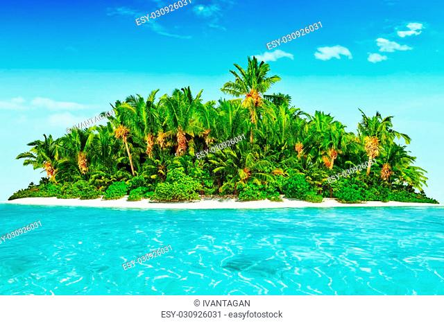 Whole tropical island within atoll in tropical Ocean. Uninhabited and wild subtropical isle with palm trees. Equatorial part of the ocean