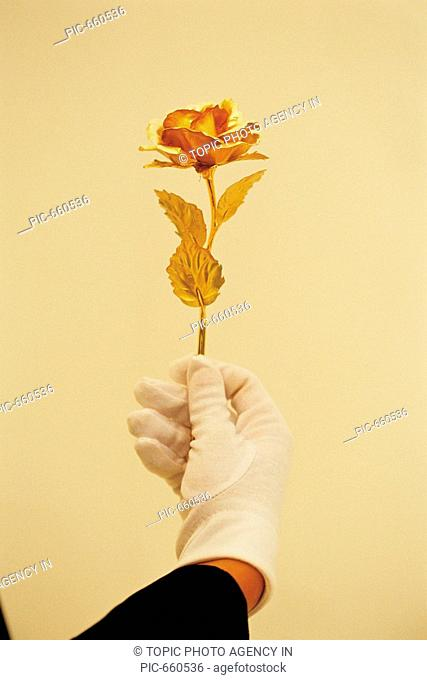 Hand with Golden Rose