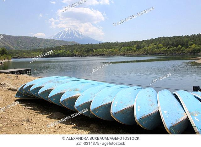 Lake Saiko & Mount Fuji, Japan