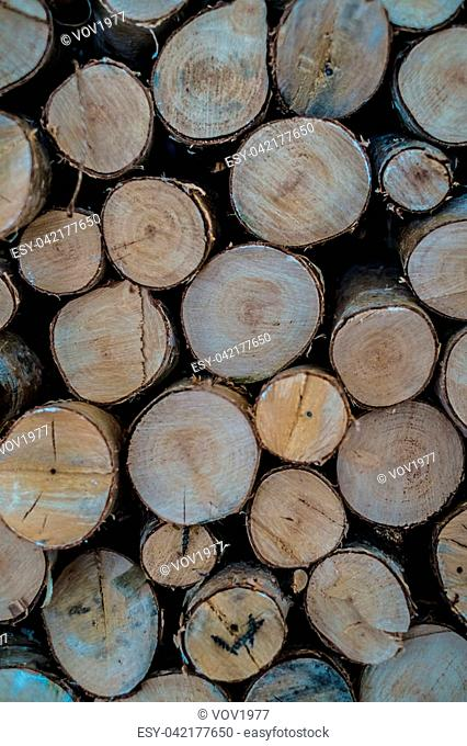 Wooden cuts background