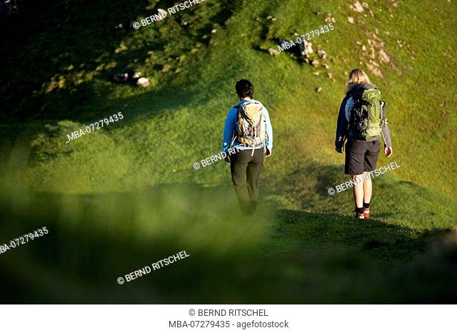 Hikers on the Hohe Ziegspitz, Ammergau Alps, close Garmisch, Upper Bavaria, Bavaria, Germany