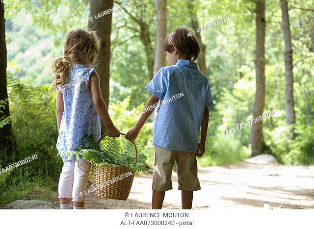Children walking together in woods, carrying basket of fern fronds