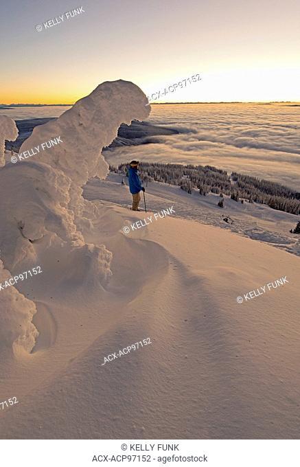 A skier among snow ghosts create a beautiful environment before sunrise at the top of Sun Peaks Resort, Thompson Okangan region, British Columbia, Canada
