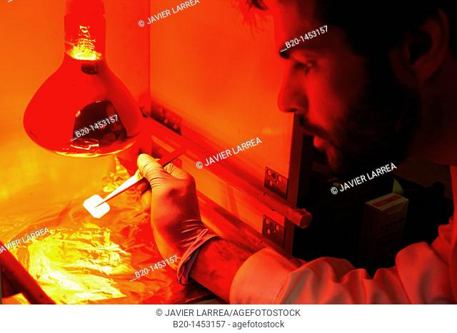 Red lighting, polymers composition and characterization, Technology Research Center, Tecnalia Construction, CIDEMCO-Tecnalia Research & Innovation